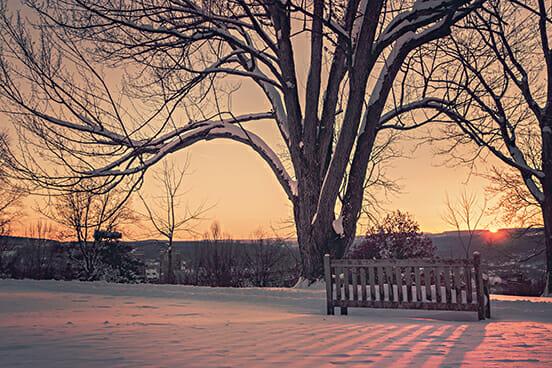 Kälte Winter Schnee