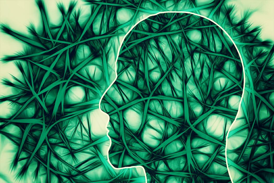Schematische Darstellung von Gehirn & Nervenbahnen